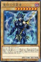 竜核の呪霊者