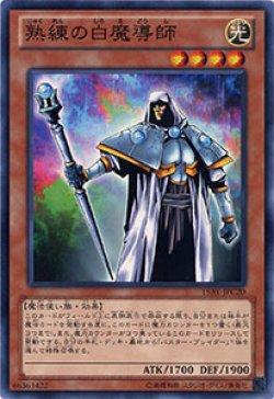 画像1: 熟練の白魔導師