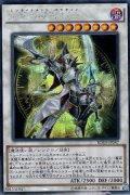 覚醒の魔導剣士(エンライトメント・パラディン) 【傷あり】