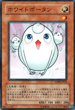 画像1: ホワイトポータン