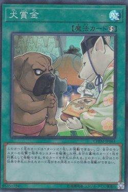 画像1: 犬賞金