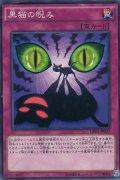 黒猫の睨み