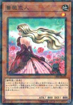 画像1: 薔薇恋人 (バラ・ラヴァー)