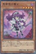 黒薔薇の魔女(ブラックローズウィッチ)