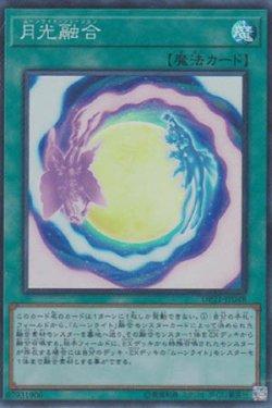 画像1: 月光融合(ムーンライト・フュージョン)