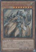 教導の騎士フルルドリス