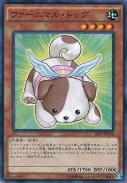 画像1: ファーニマル・ドッグ