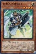 巨竜の守護騎士(ガーディアン・オブ・フェルグラント)